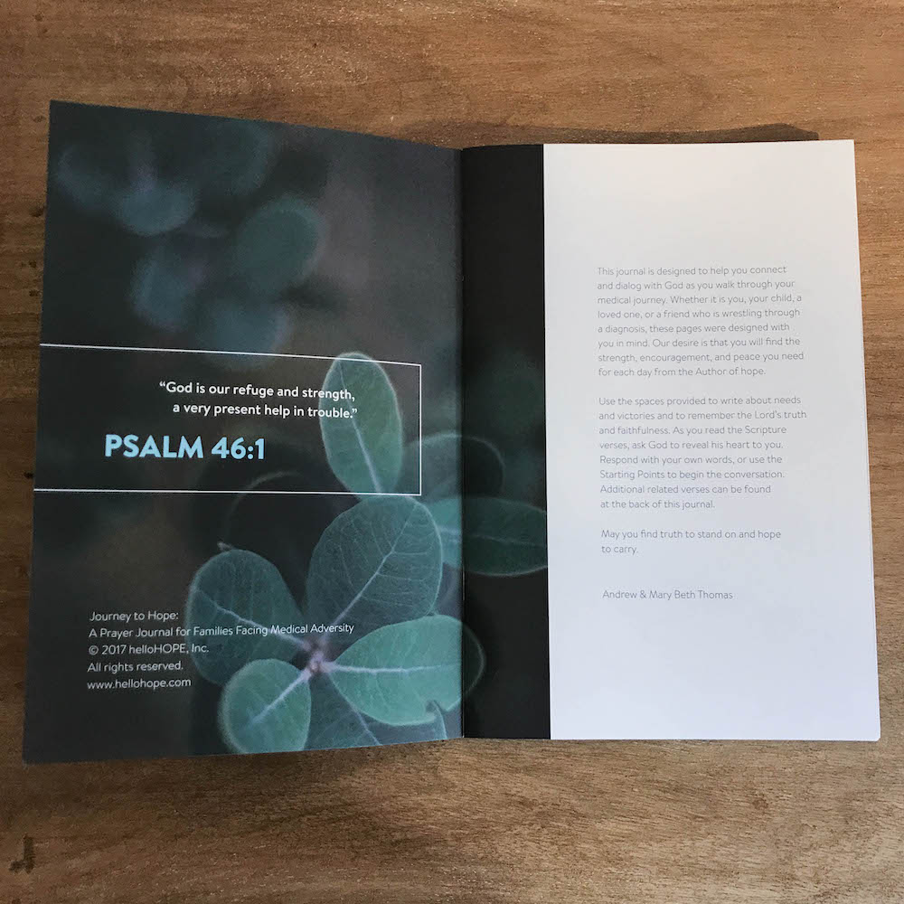 helloHOPE-Prayer-Journal_Journey-to-Hope-Intro.jpg