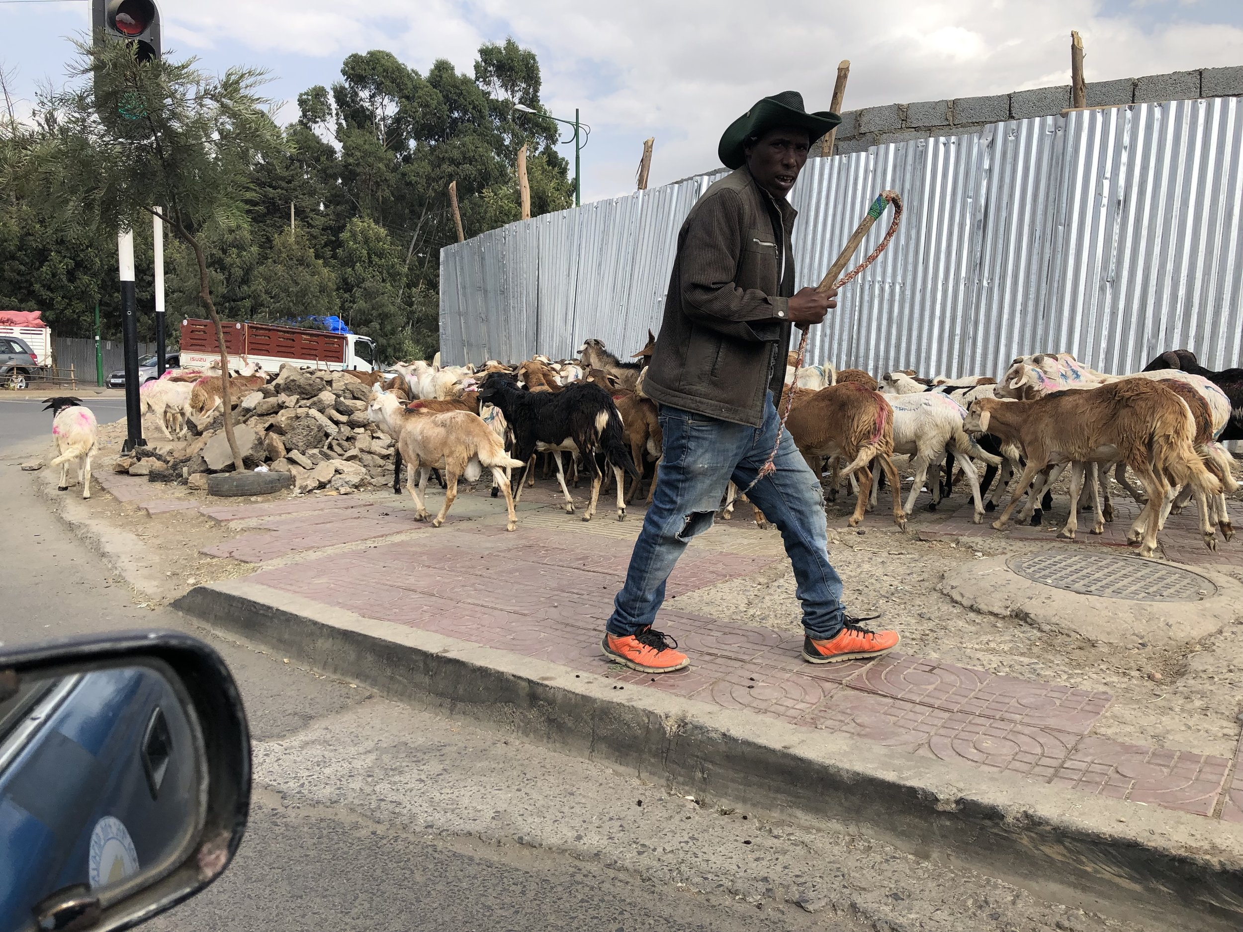 AddisTripFebruary2019_1.jpg