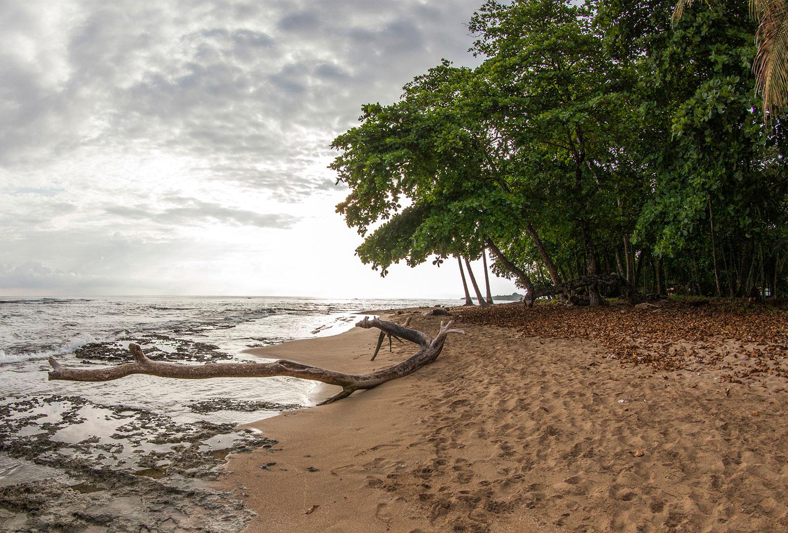 Playa Chiquita, Limón. Costa Rica.