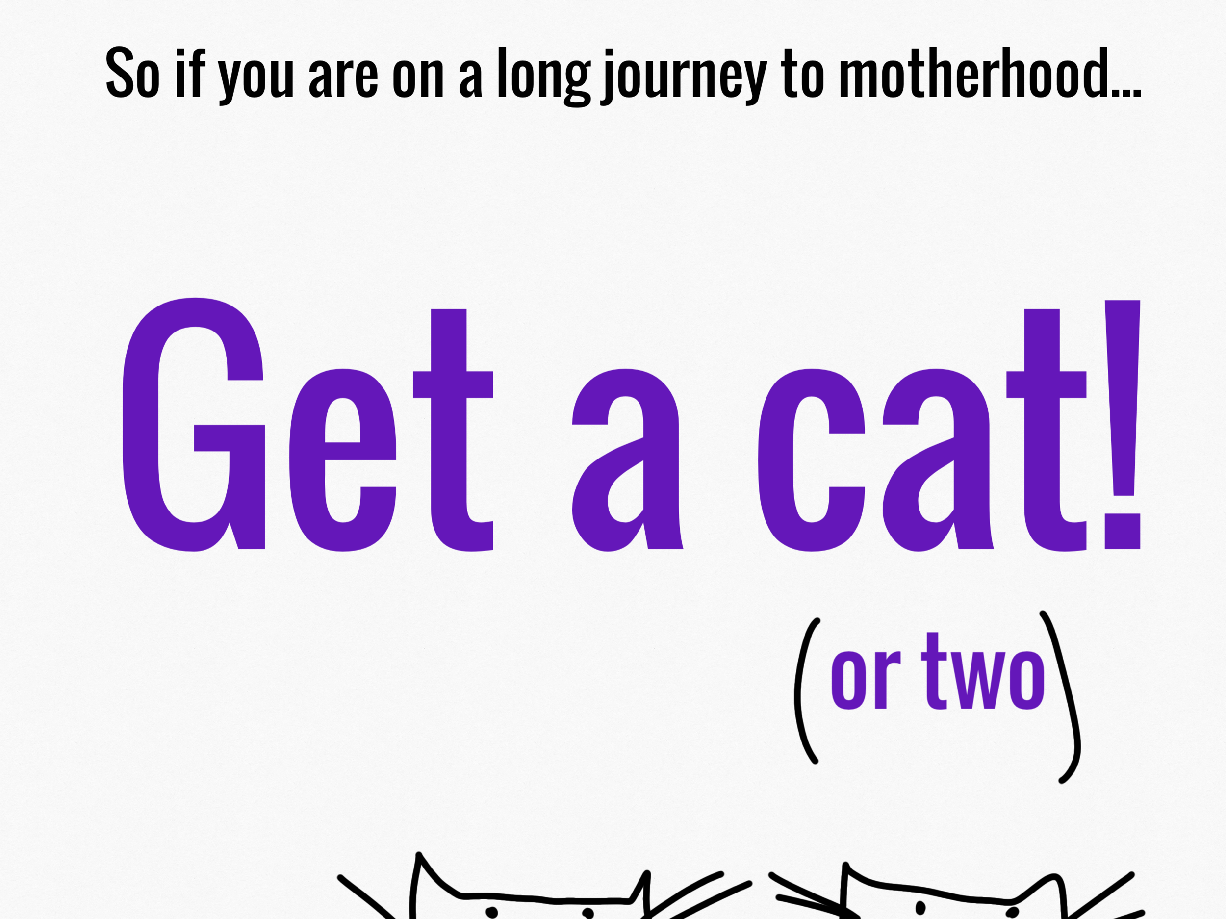 get-two-cats.png