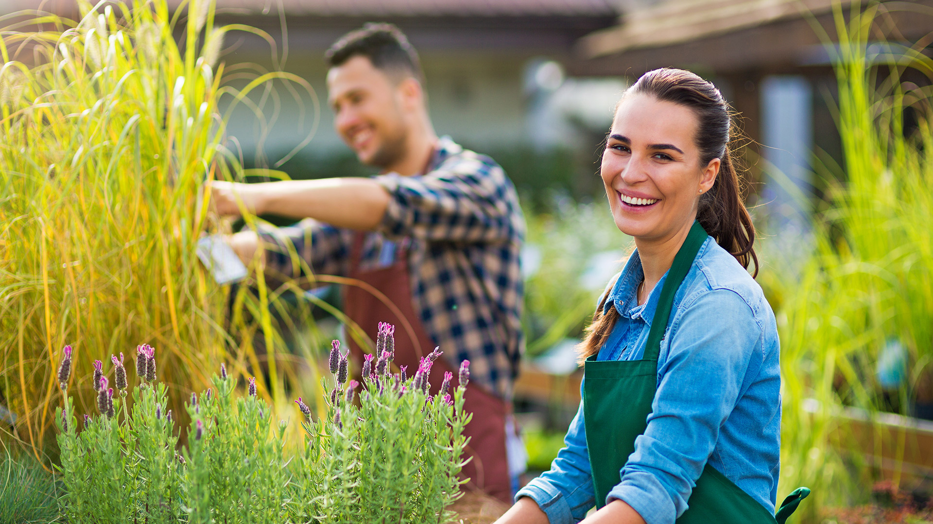 Take Your Horticultural Skills to the Next Level and Learn How to Create Your Own Outdoor Transformations   STUDY CERTIFICATE III in HORTICULTURE (AHC30716)   FIND OUT MORE