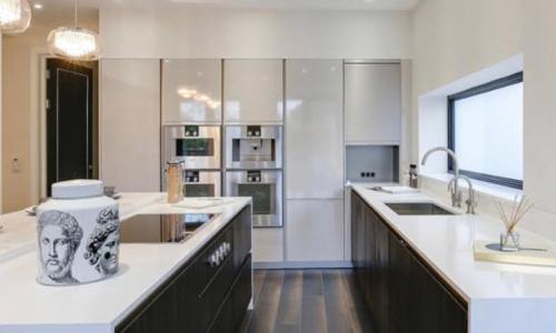 contemporary-kitchen1.jpg