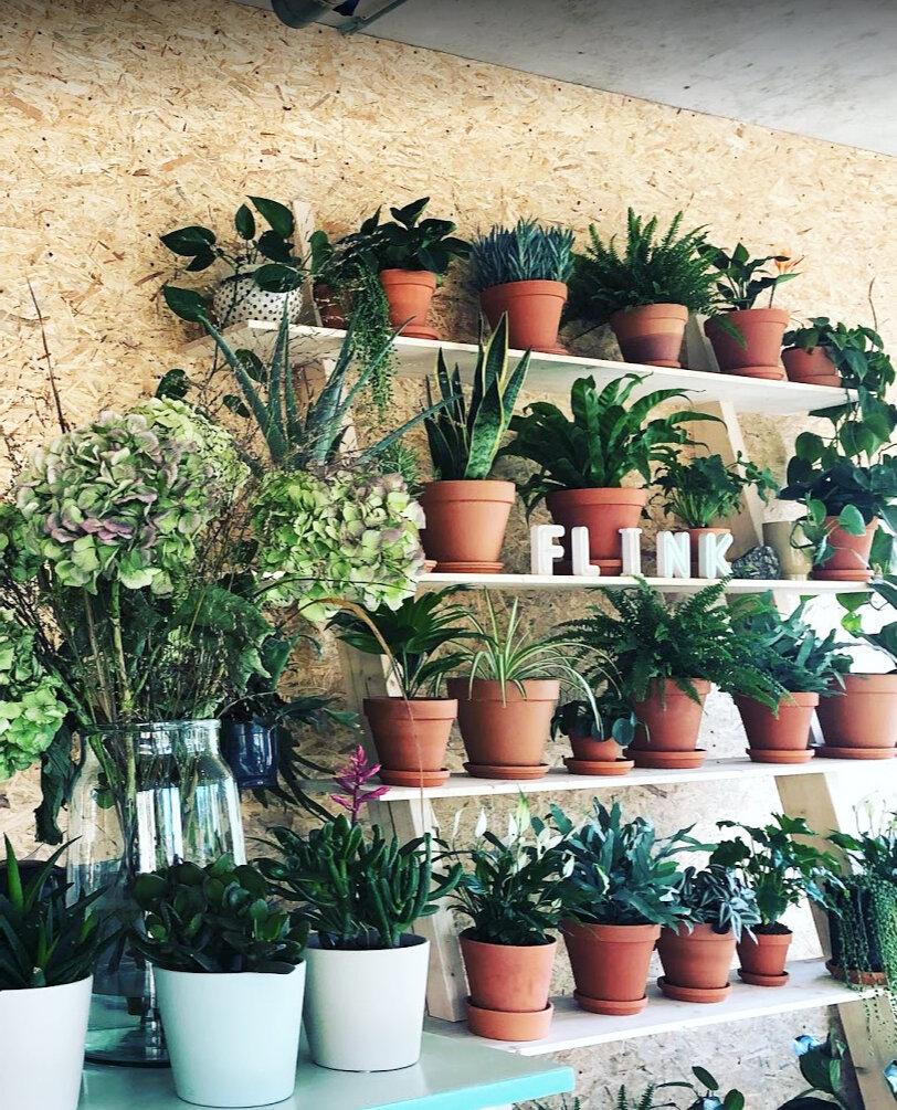 Flink Cafe Entrance Plants.jpg