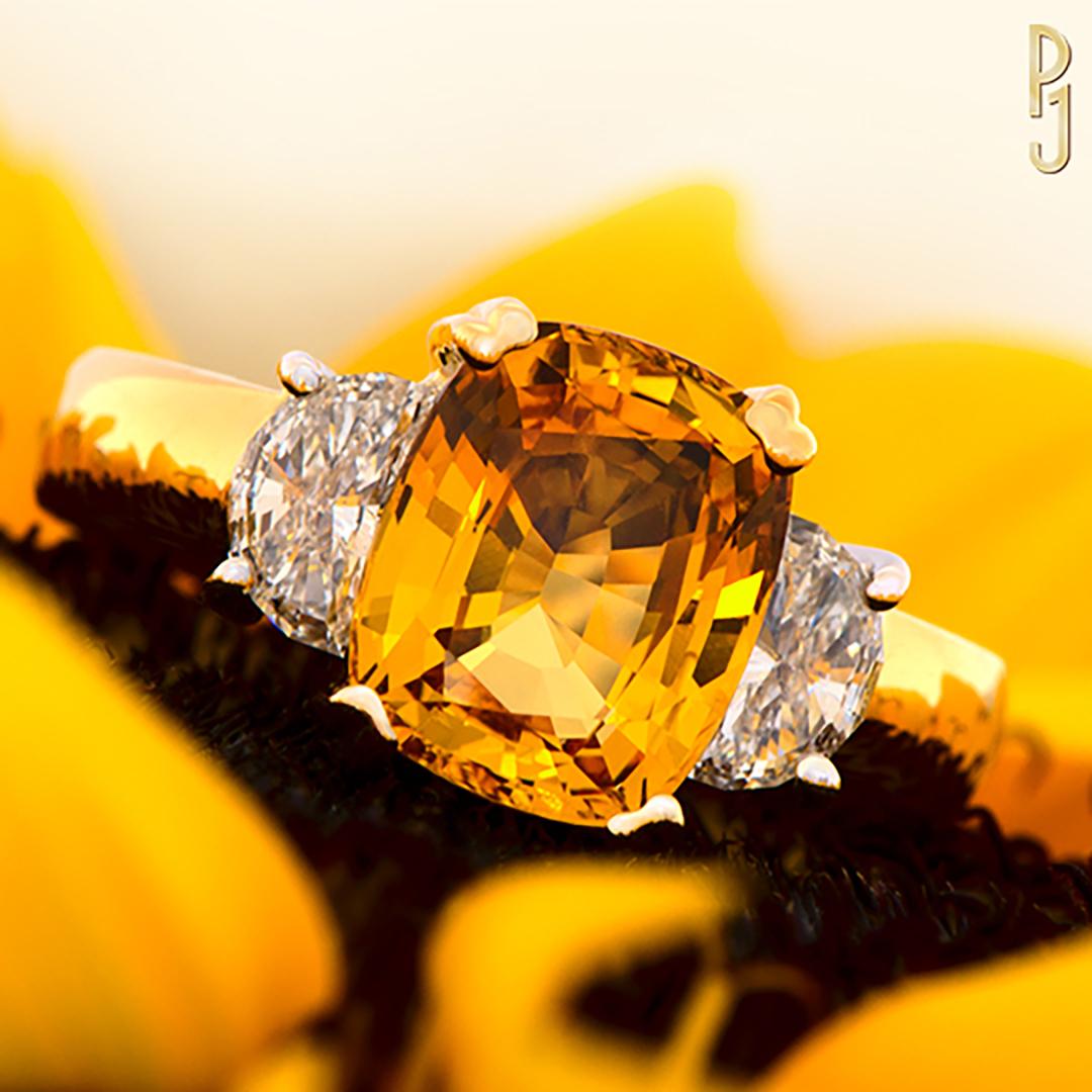 Instagram Goldern Sapphire Sunflower DSC0003.jpg