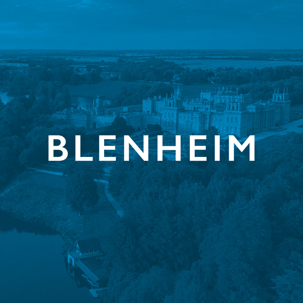 BLENHEIM-thumb.jpg
