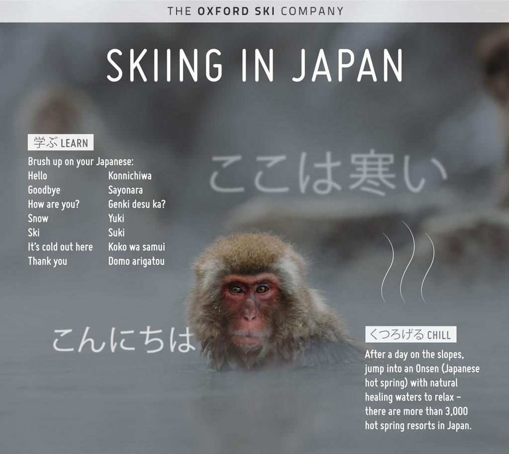 JapanSkiing-social-33.jpg