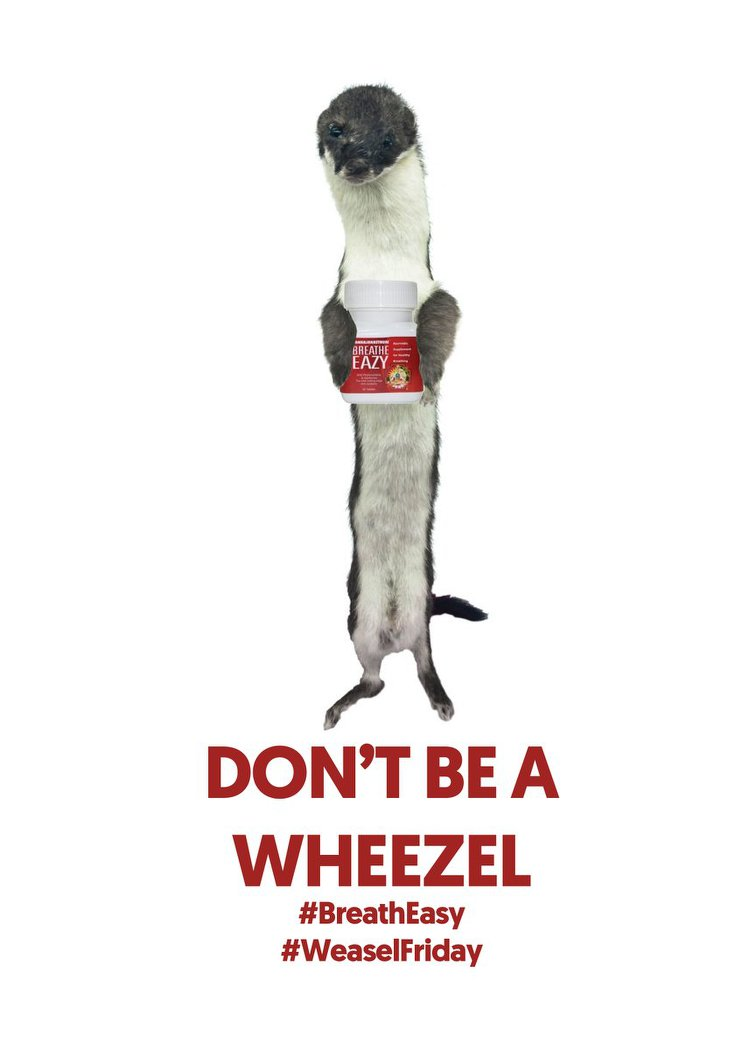 Weasel_Friday_Entry_017.jpg