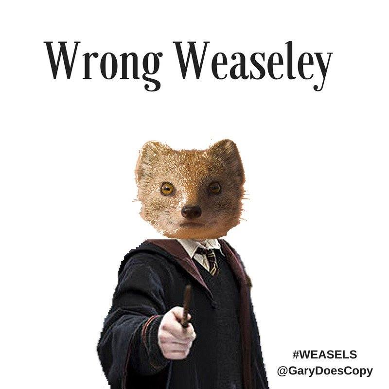 Weasel_Friday_Entry_023.jpg