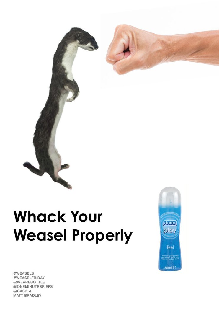 Weasel_Friday_Entry_047.jpg