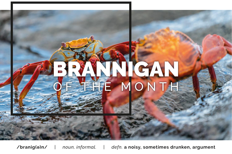 Sept 2019_Brannigan website image.png
