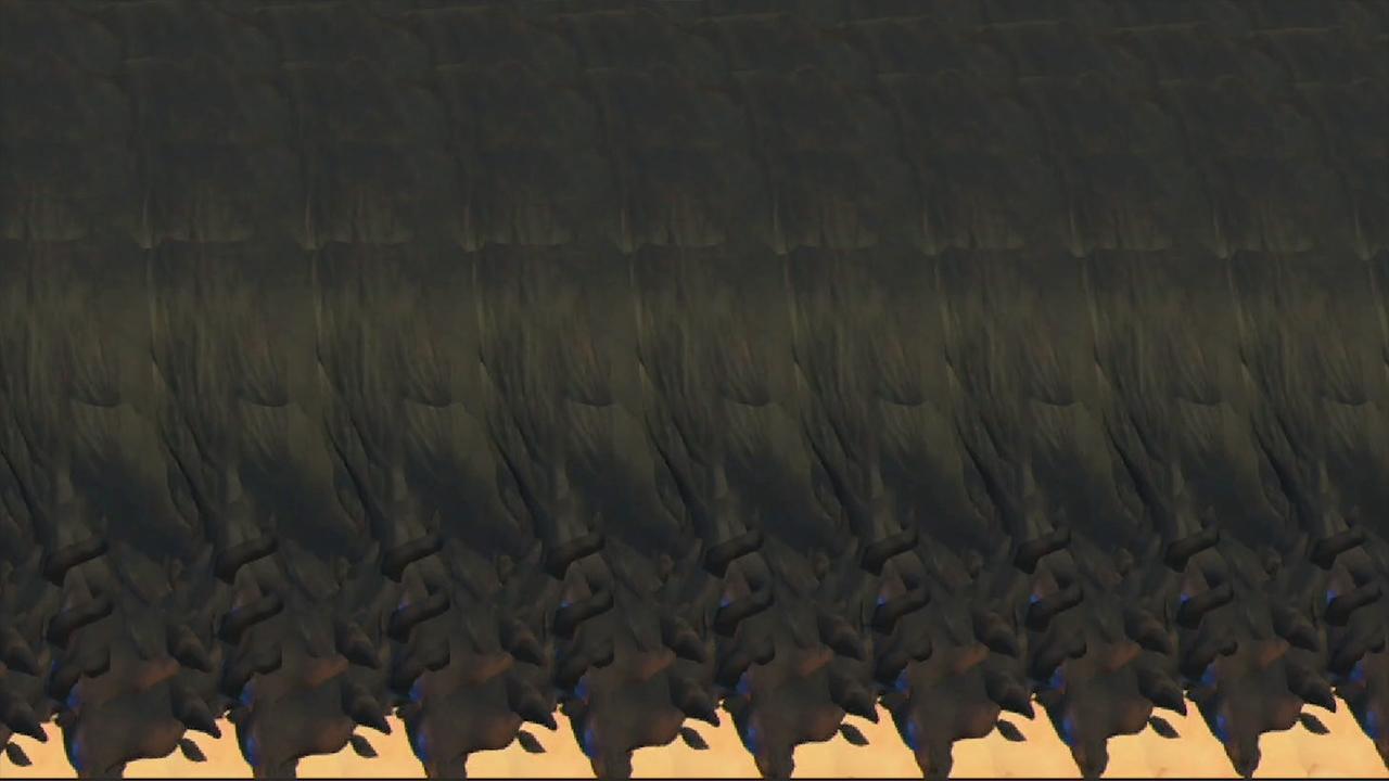 HEADS-04.jpg