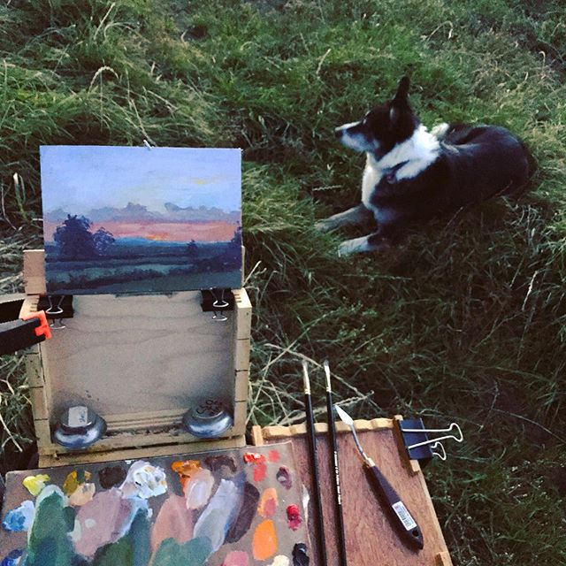 Me and my dog enjoying sunset last night, enjoyed having a barn owl check me out whilst hunting, awesome experience #instaart #oilpainting #pleinair #allaprima #sunset #colliesofinstagram #collies