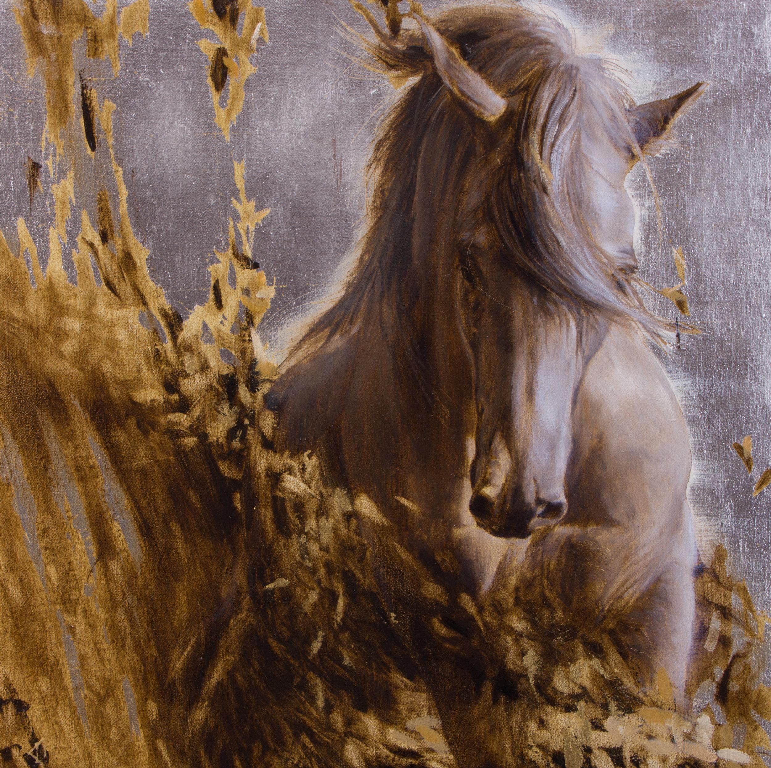 Horses in my Dreams