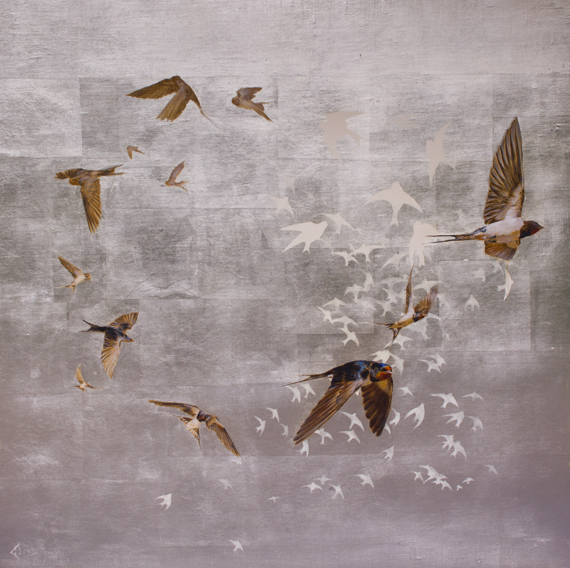 Swallows Return