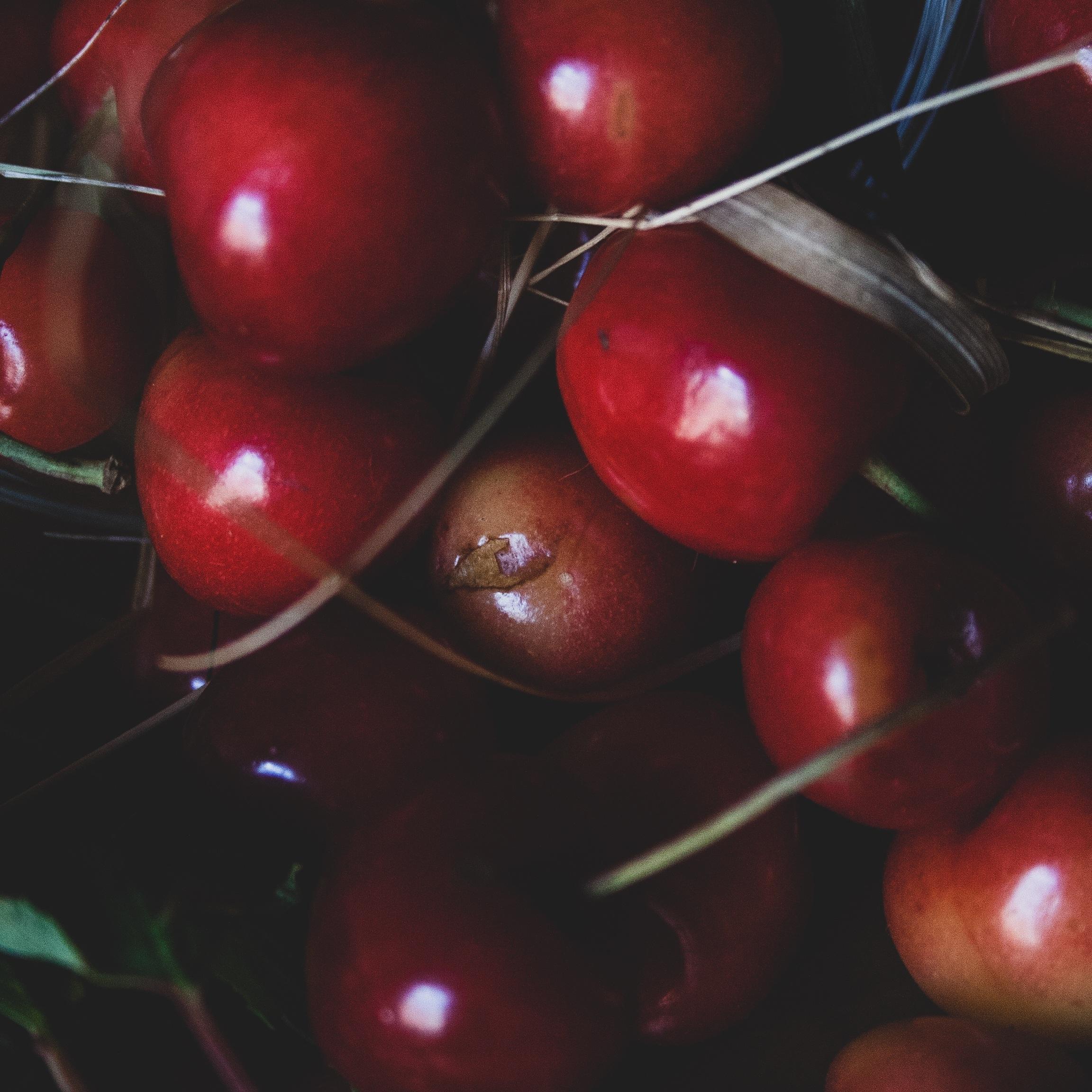 BRINS Cherry
