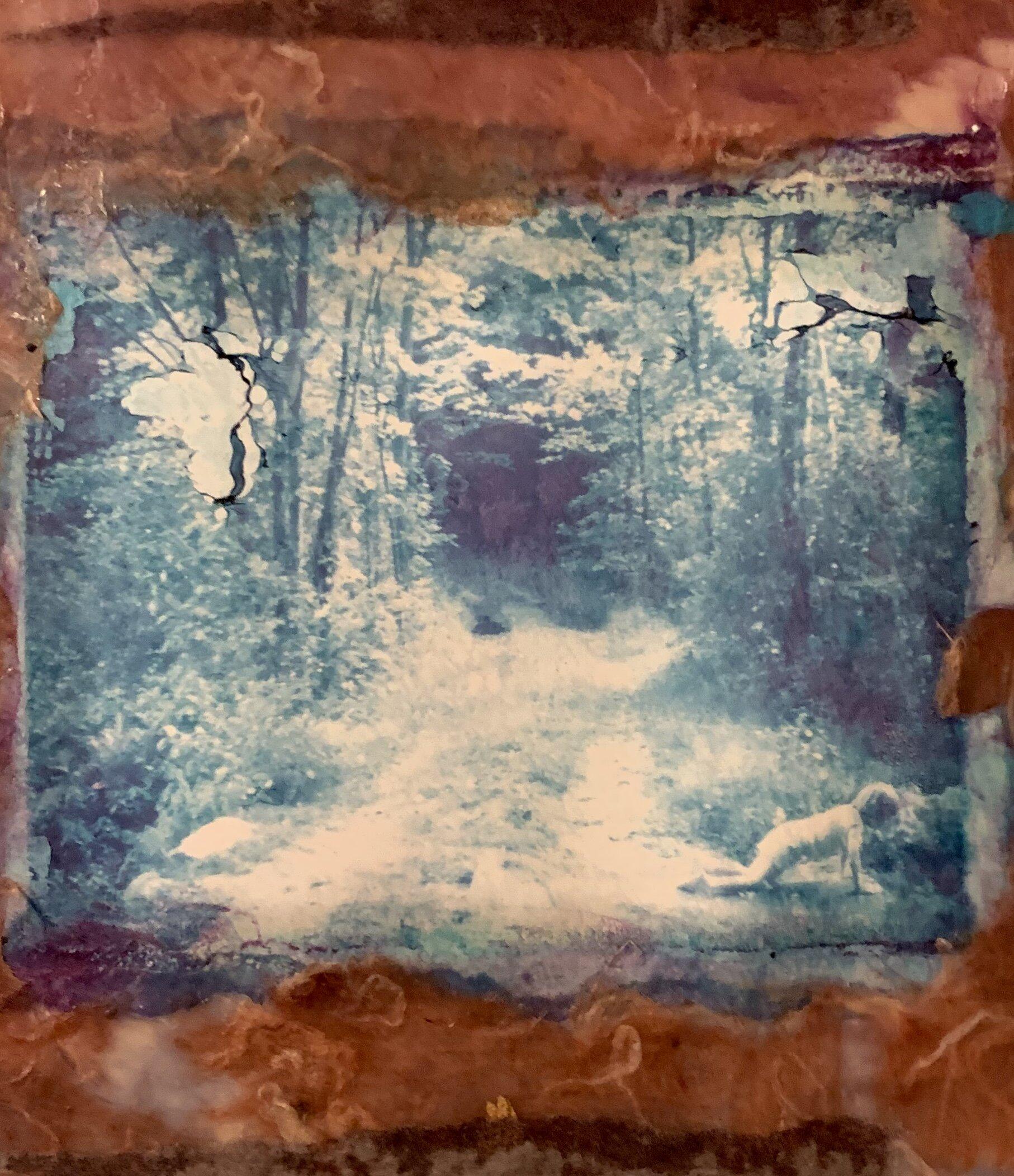 Fay Senner - polaroidtrasfer copy.jpg