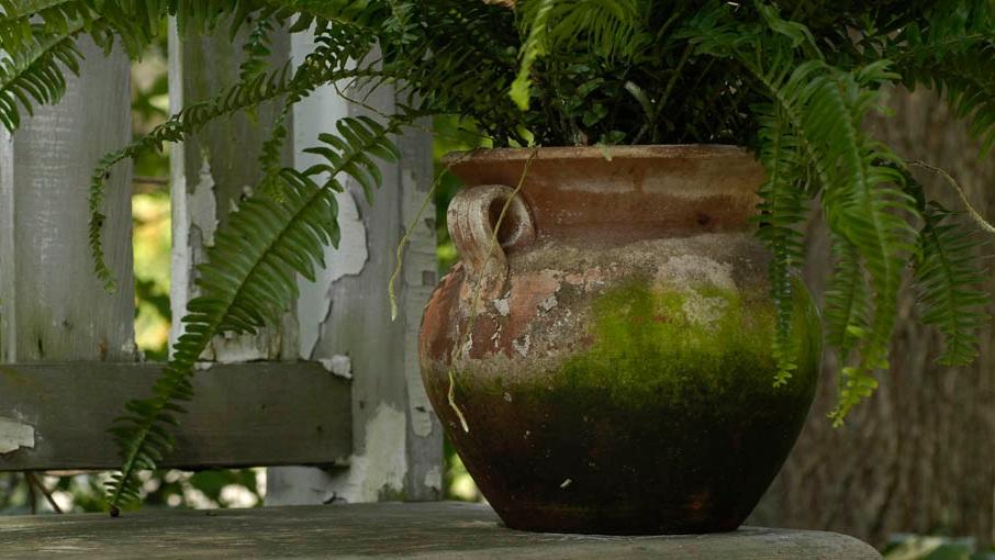 Aged+Terracotta+.jpg