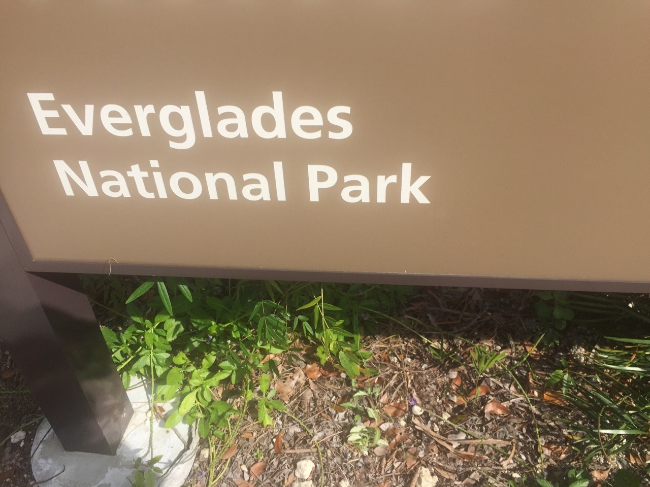 Off the grid in the Everglades for a few days. Y'all behave yourselves!
