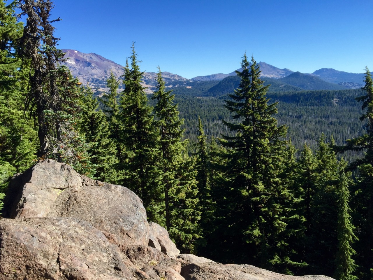 From left to right: South Sister and Broken Top (behind the pine)  via  https://dayone.me/2ct0zOf