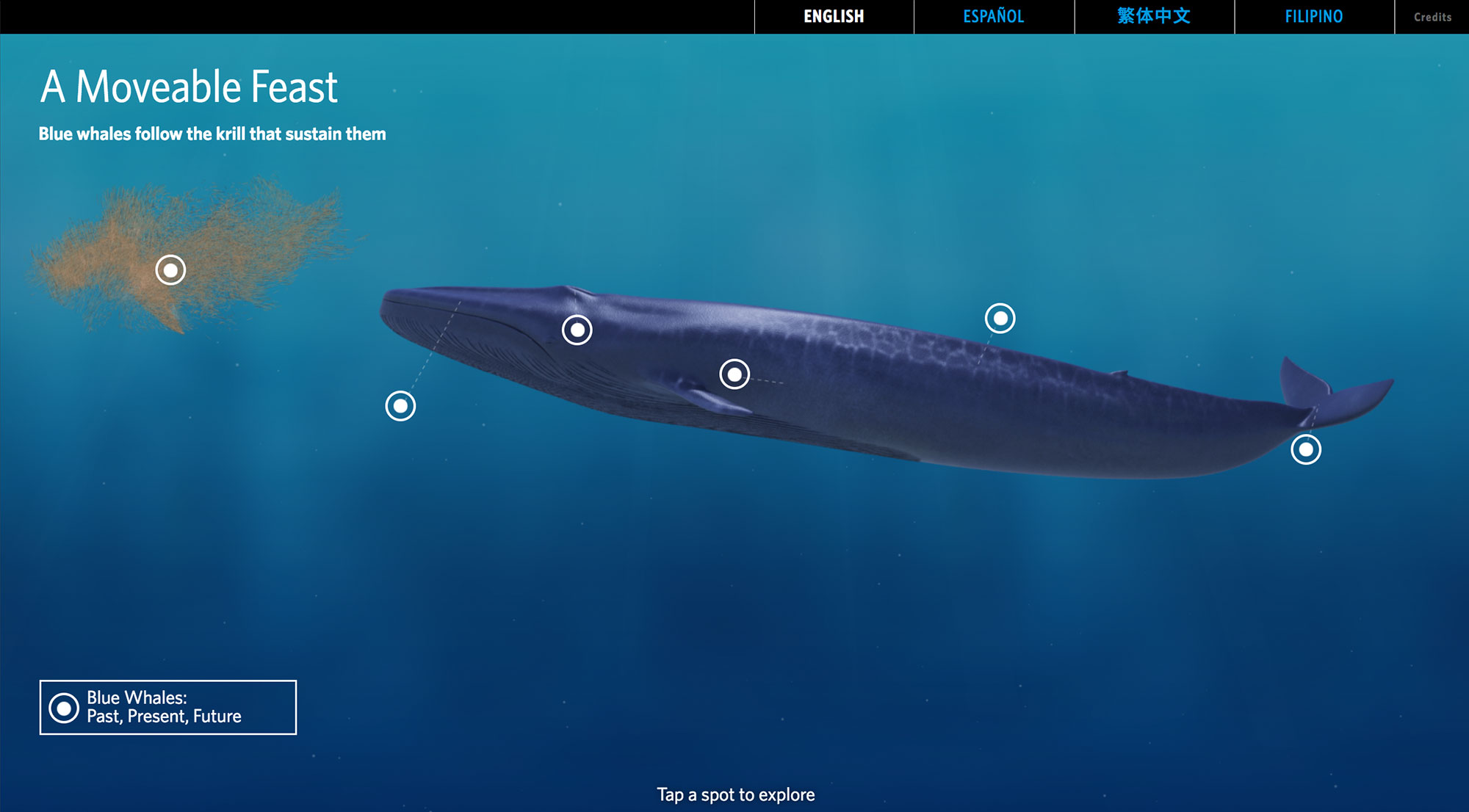Home screen with hotspots on the whale, krill, and a button to explore historical facts