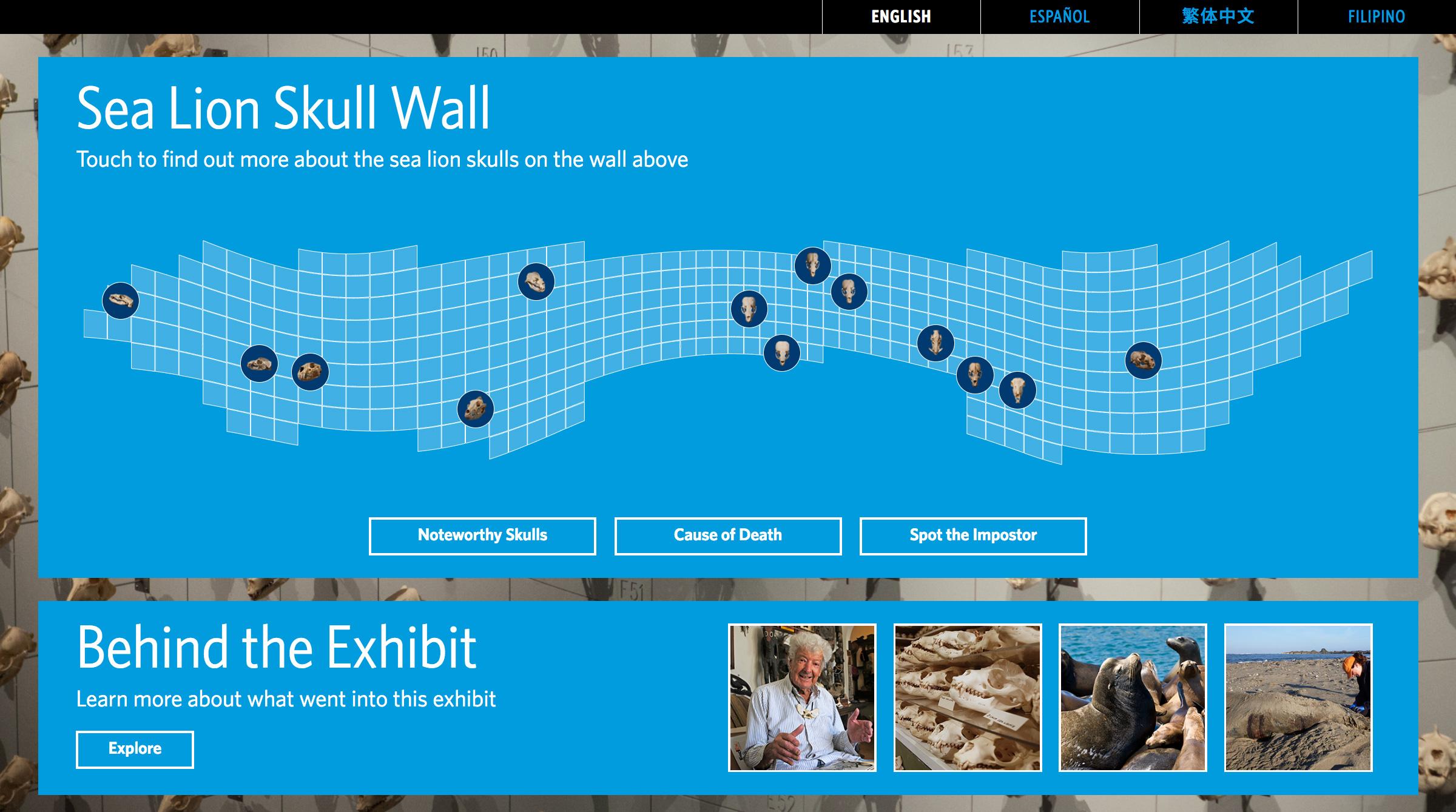 Home screen A: Exploring the grid of skulls