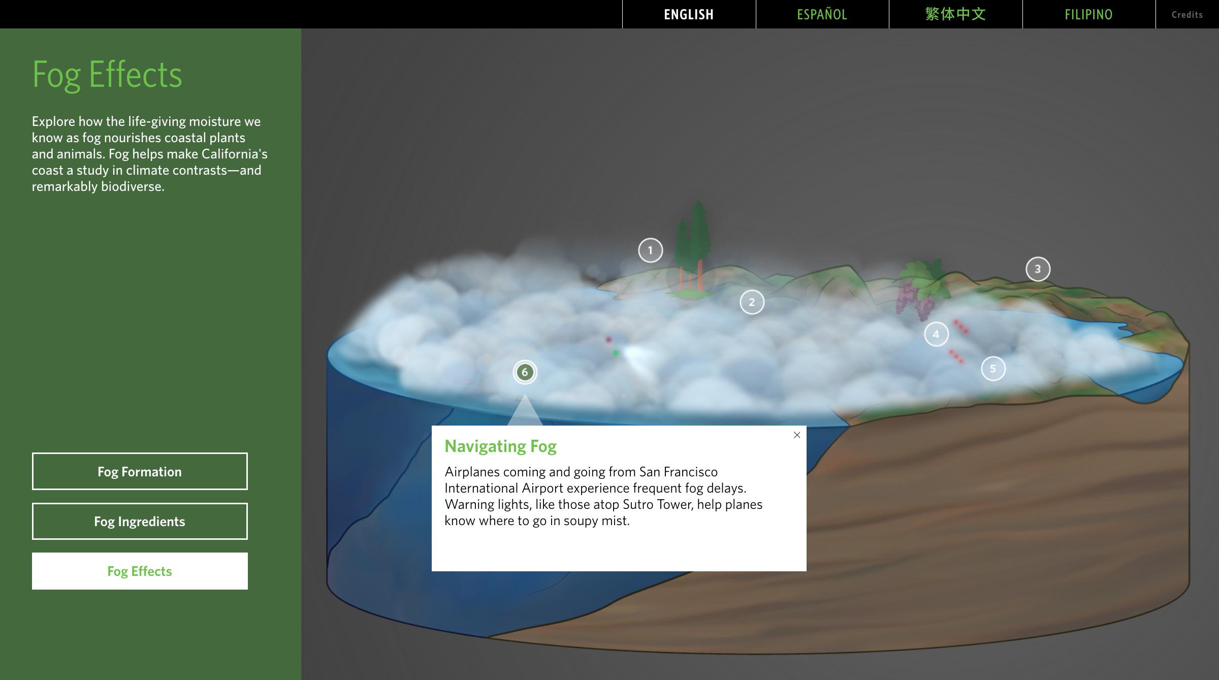 fog-fog_effects-6.jpg