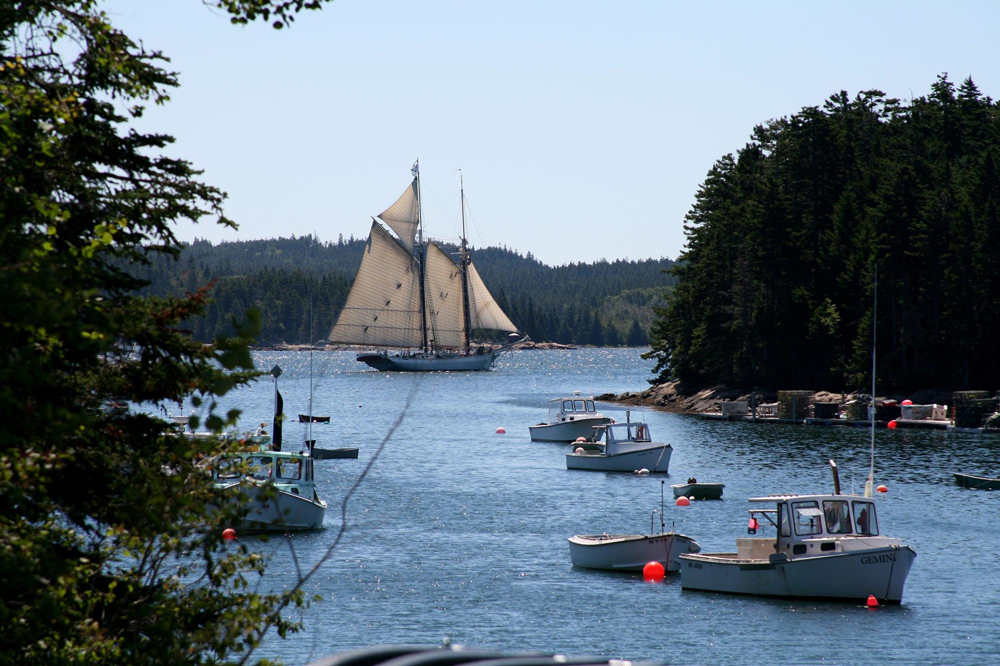 wild and beautiful - Maine