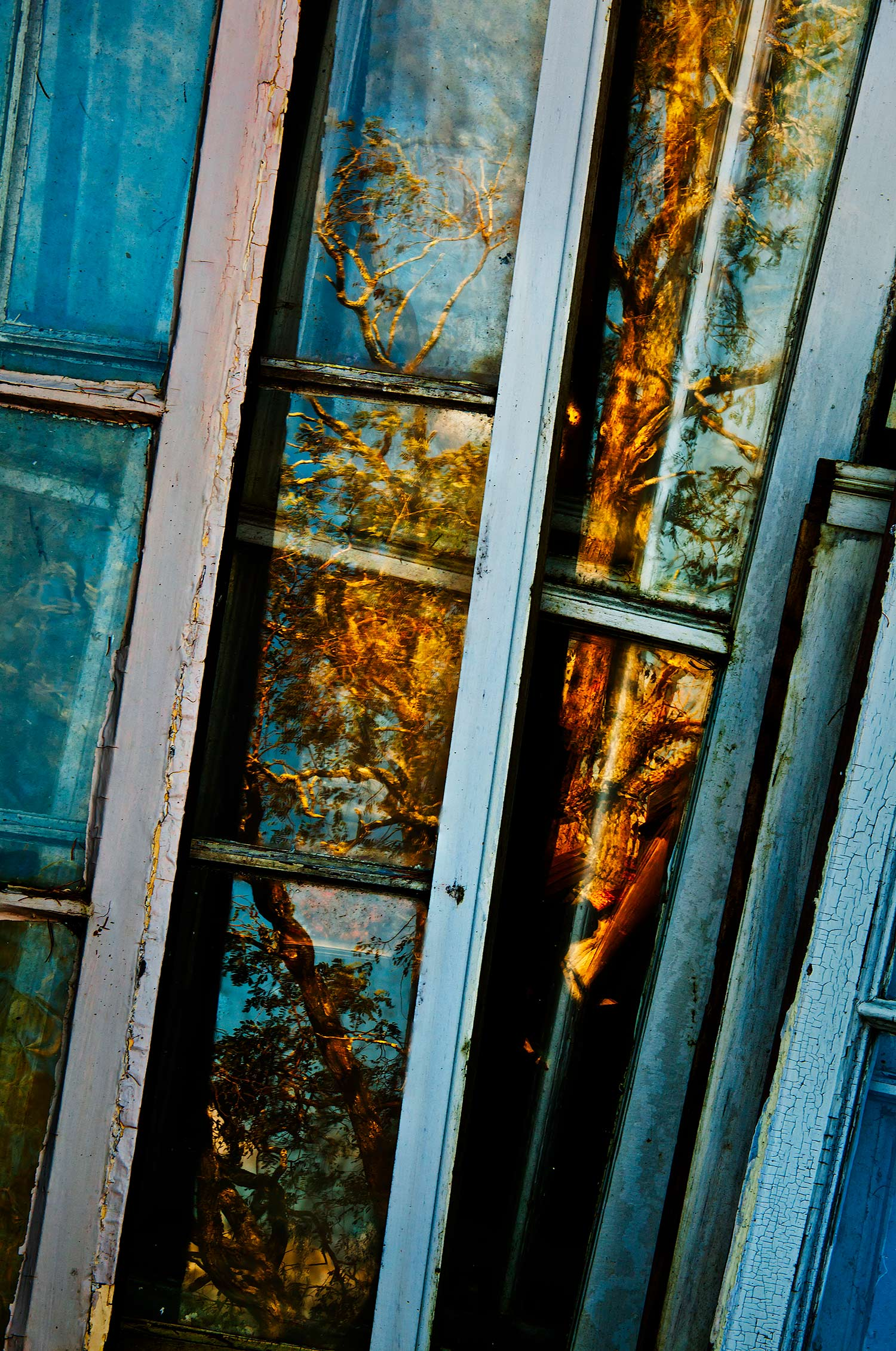 Windows, Bar Harbor, Maine, 2011