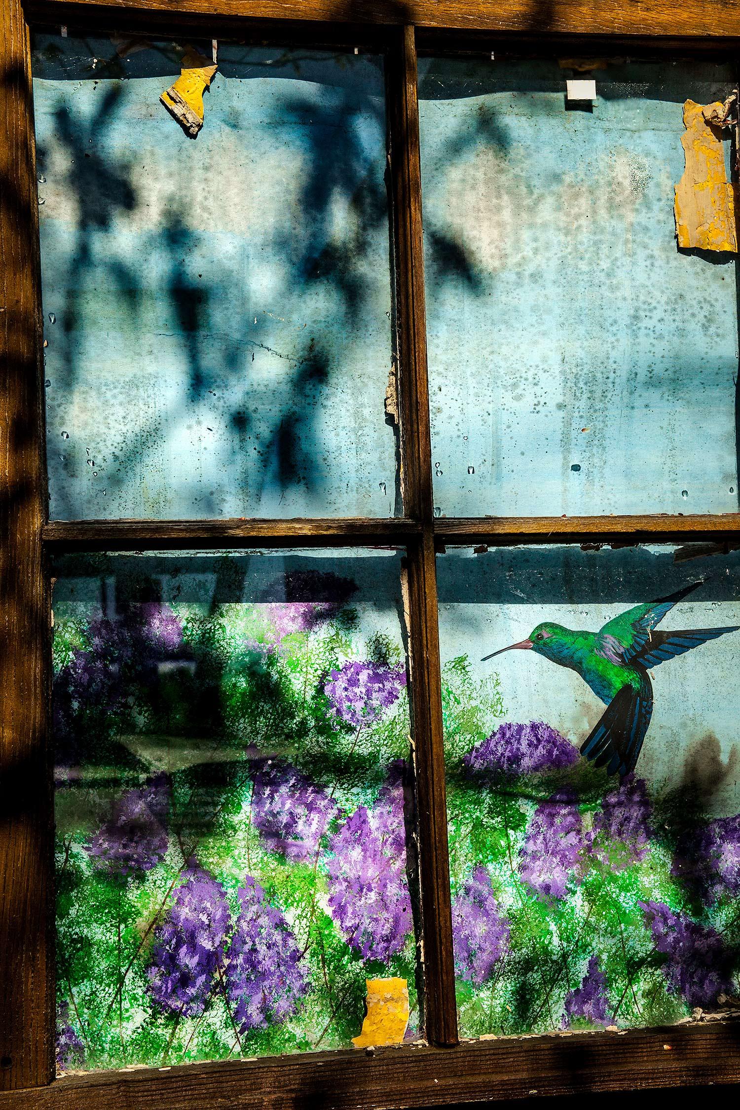 Window, Searsport, Maine, 2010