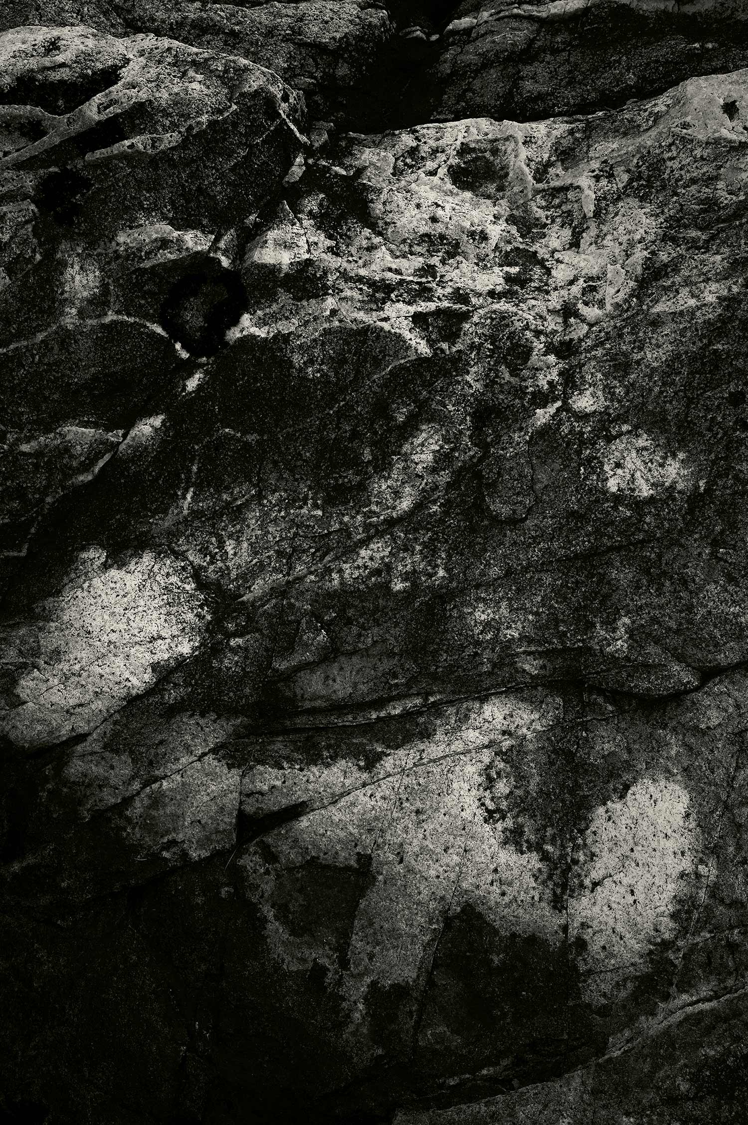 Rock, Acadia National Park, Maine, 2013