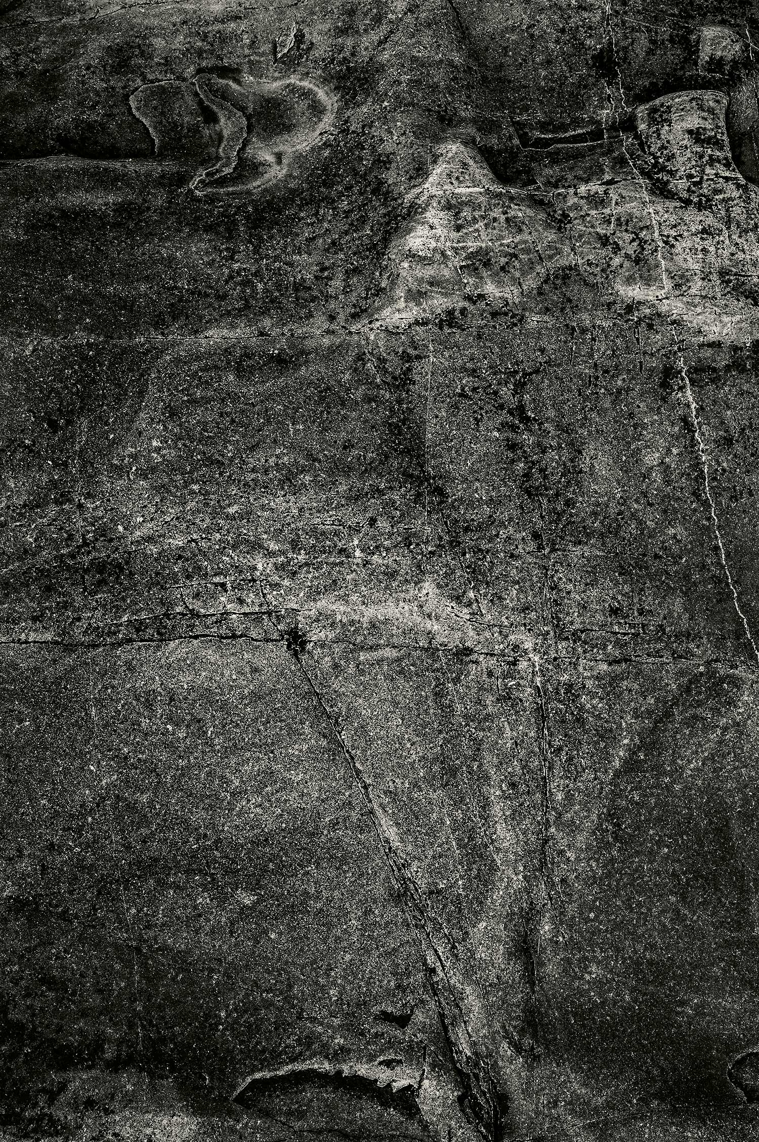 Rock, Dorr Point, Acadia, 2013