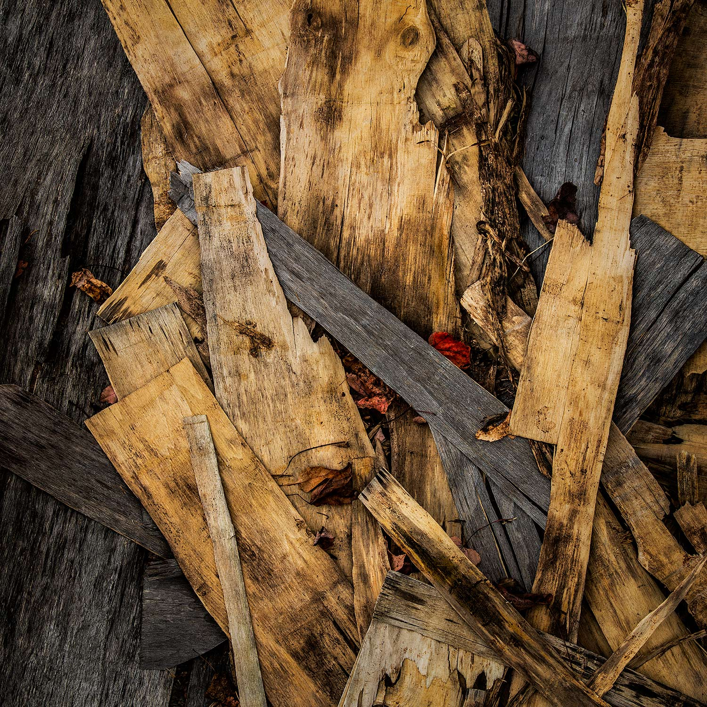 Wood Scraps, Searsport, Maine, 2017