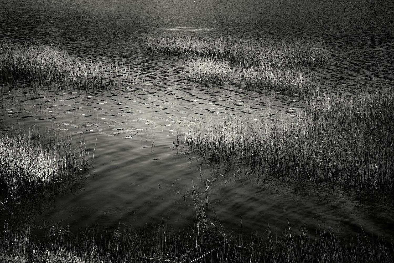 Upper Hadlock Pond 1, Acadia, 2013
