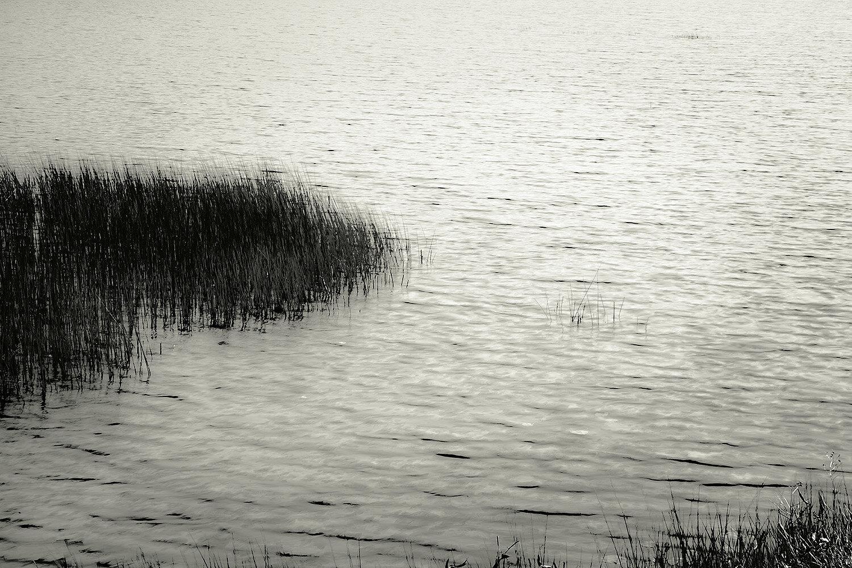 Upper Hadlock Pond 2, Acadia, 2013