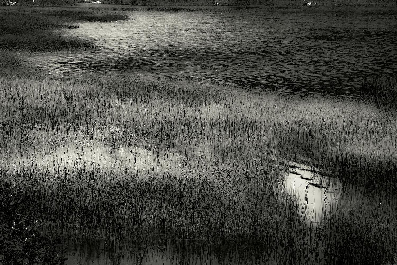 Upper Hadlock Pond 18, Acadia, 2013