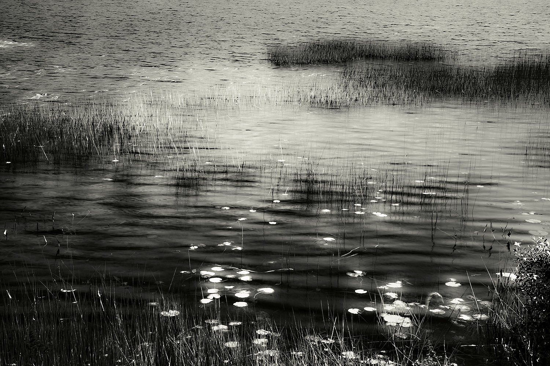 Upper Hadlock Pond 19, Acadia, 2013