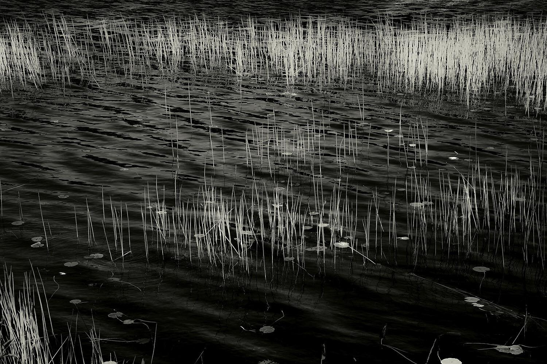 Upper Hadlock Pond 20, Acadia, 2013