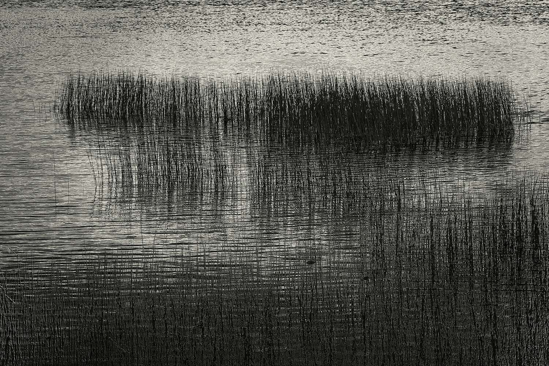 Upper Hadlock Pond 26, Acadia, 2013