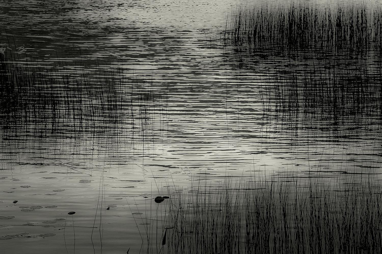 Upper Hadlock Pond 27, Acadia, 2013