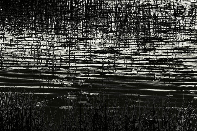 Upper Hadlock Pond 31, Acadia, 2013