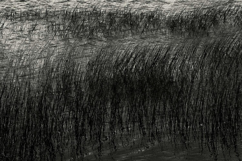 Upper Hadlock Pond 32, Acadia, 2013