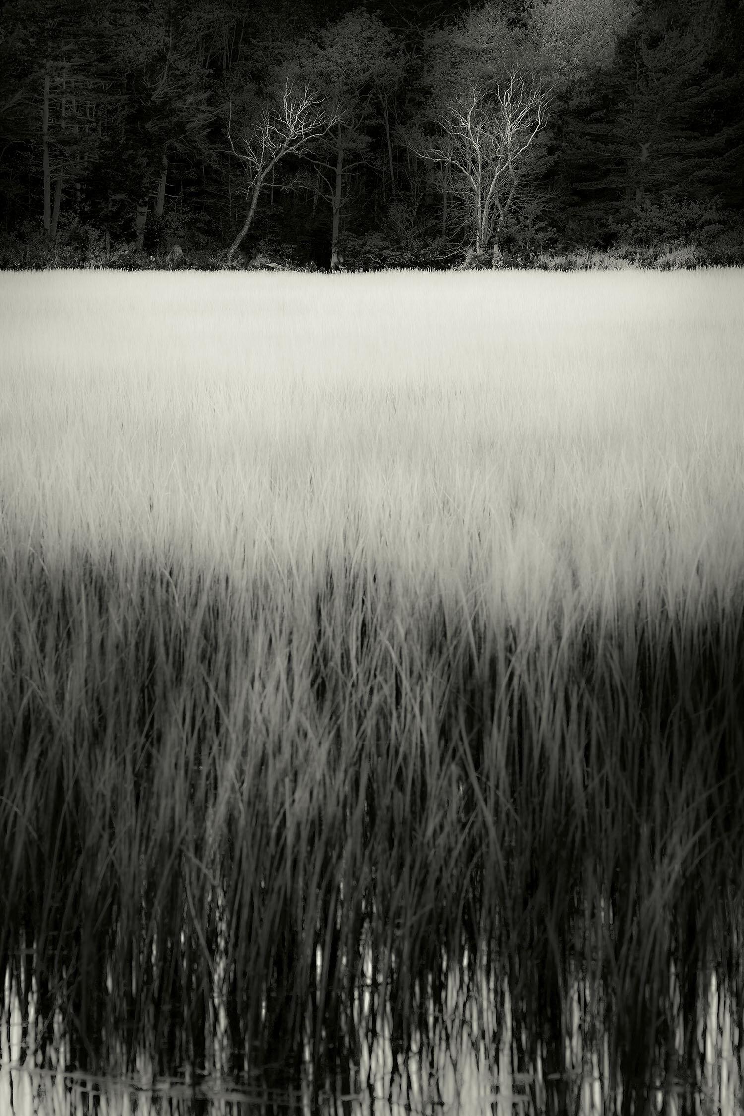 The Tarn 44, Acadia, 2013