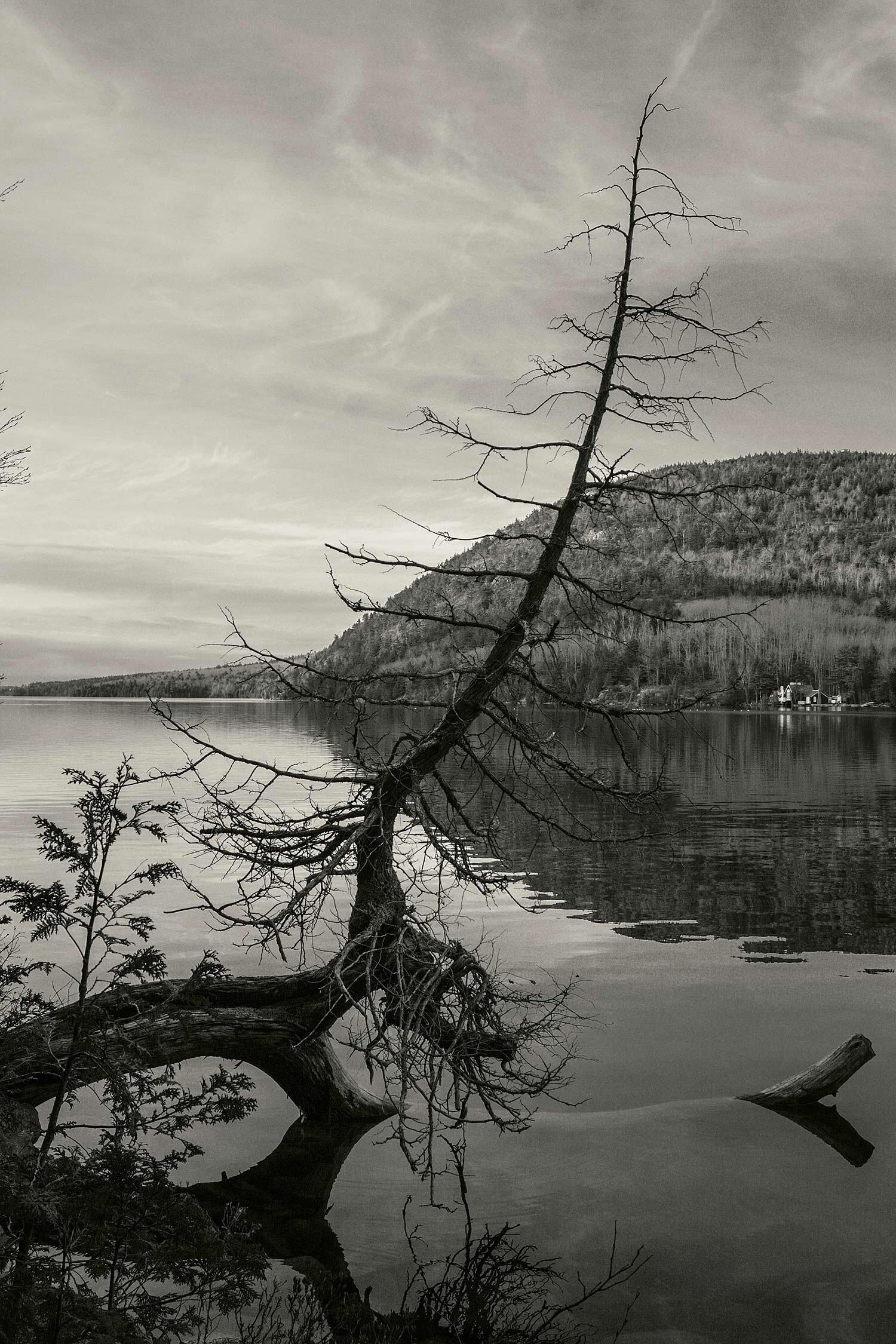 Long Pond, Acadia, 2007