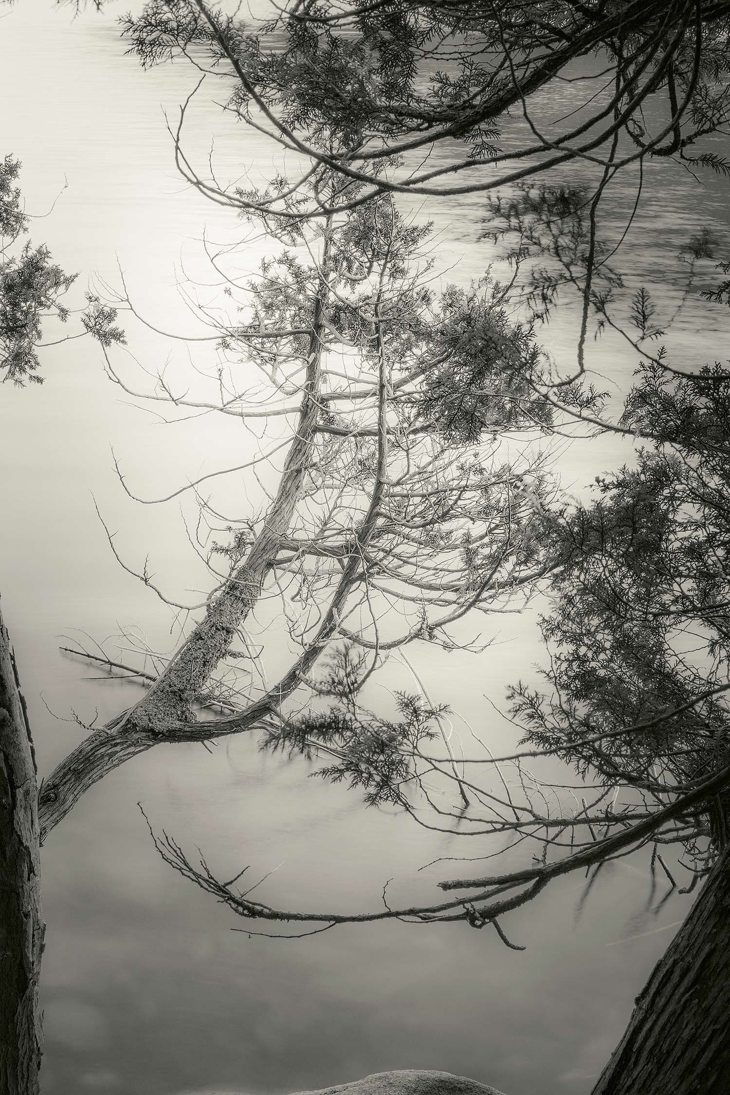 Long Pond, Acadia, 2013