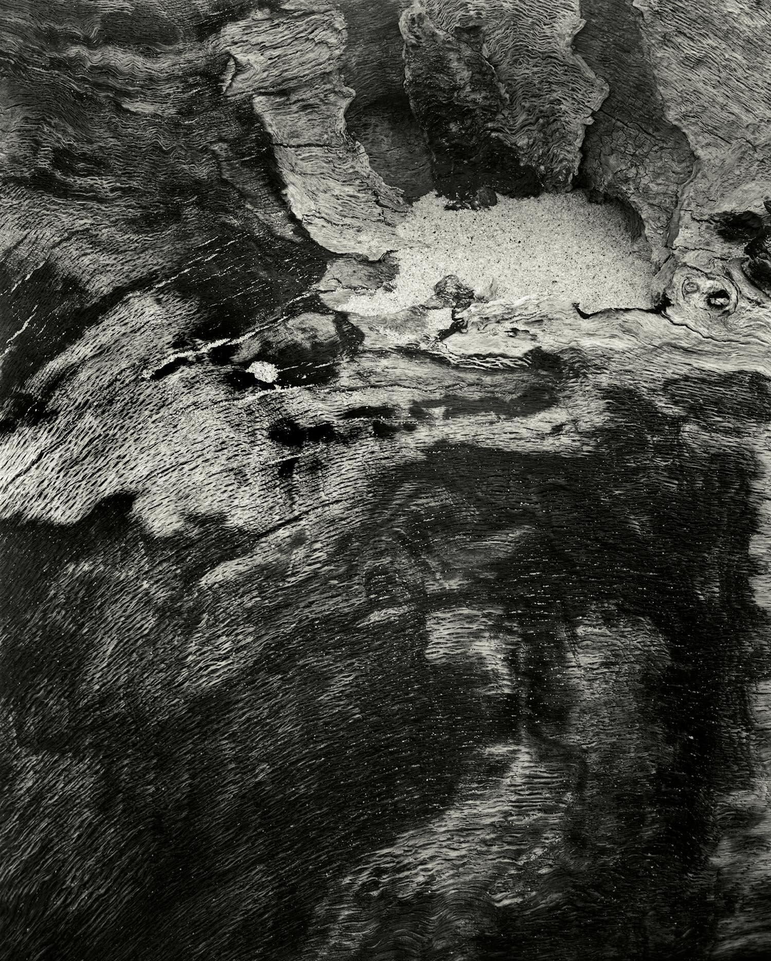 Charred Driftwood, CedarPoint Beach, Long Island, 1976