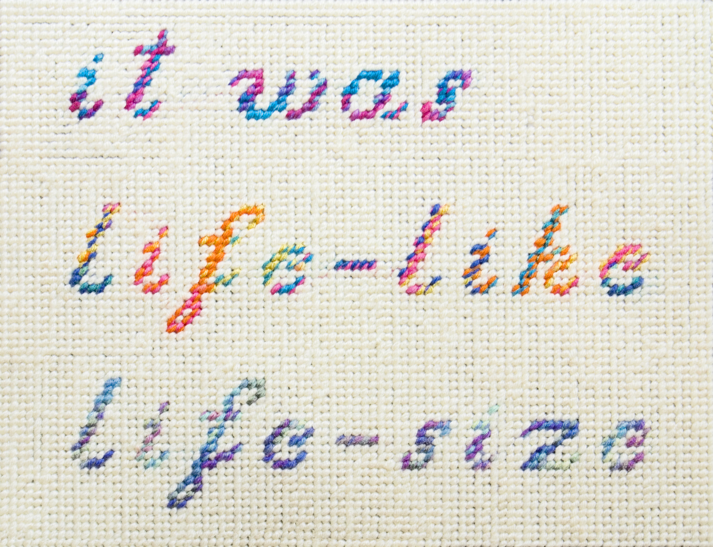 it was life-life life-size   Yarn on plastic canvas  2013