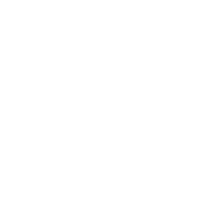 Standing Stone Village---_logo-white.png