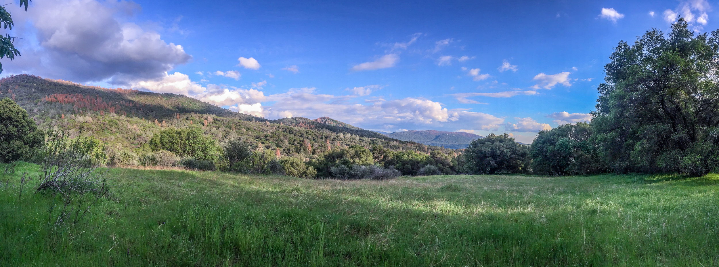 Most of the lots have views of the surrounding foothills.