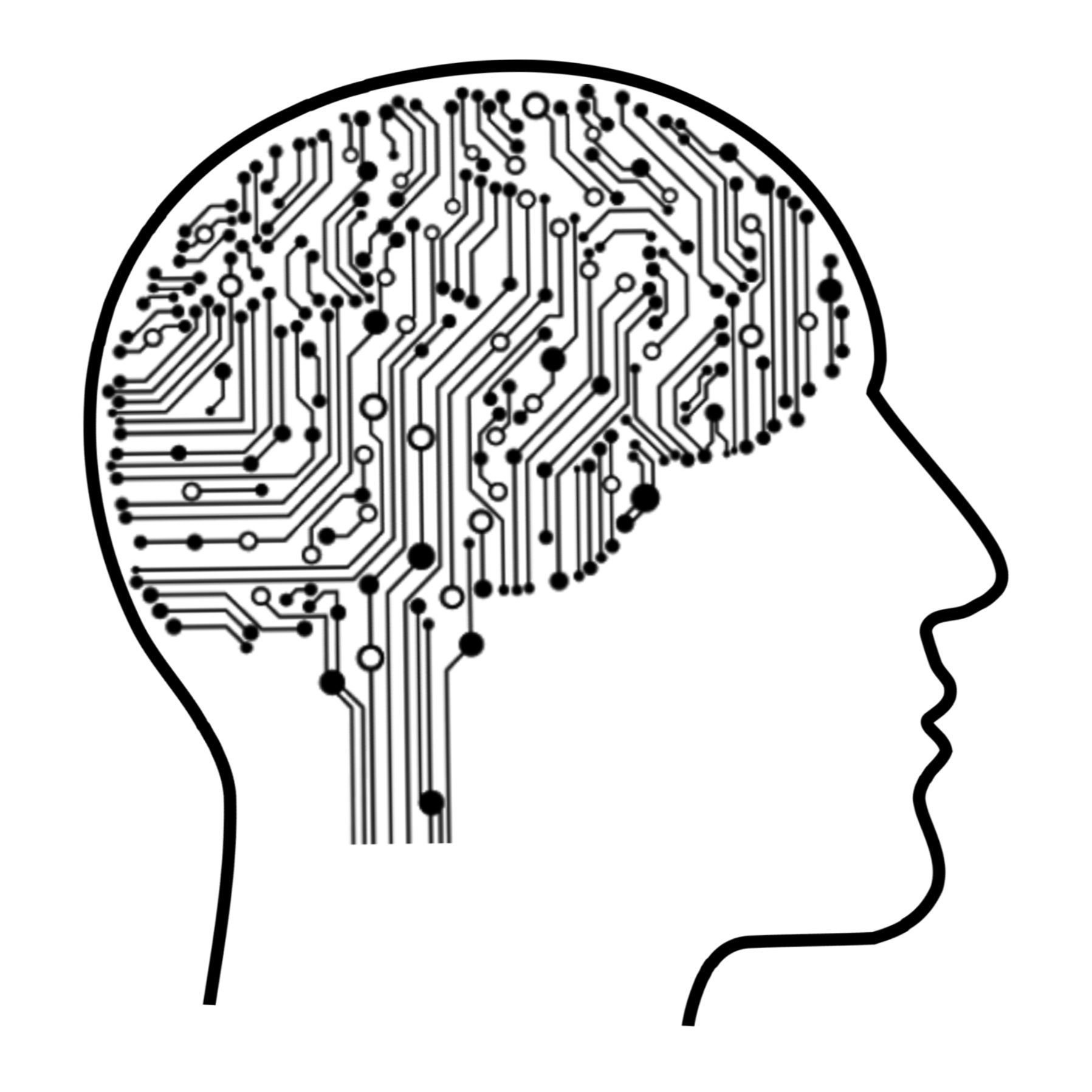 Use both logic and creativity to craft a meaningful and impactful user experience for you data. Image by mohamed Hassan from Pixabay. Brain as a circuit board.