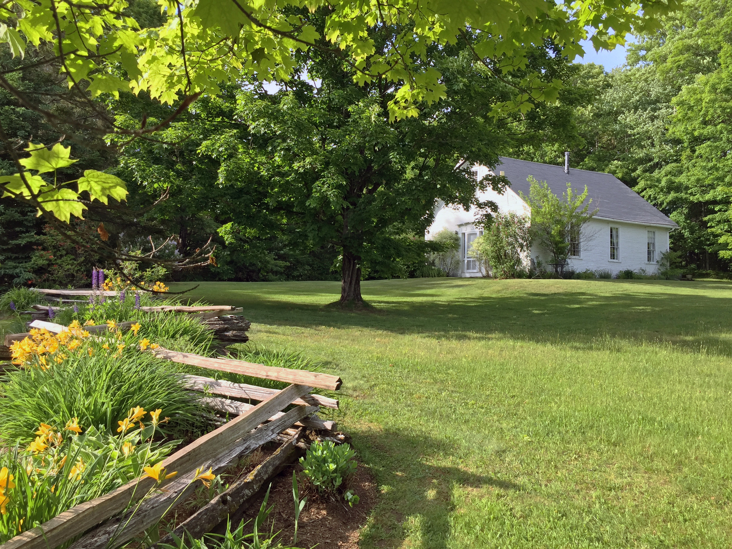 IMG_3437 Fifield Schoolhouse from Driveway Fence.jpg